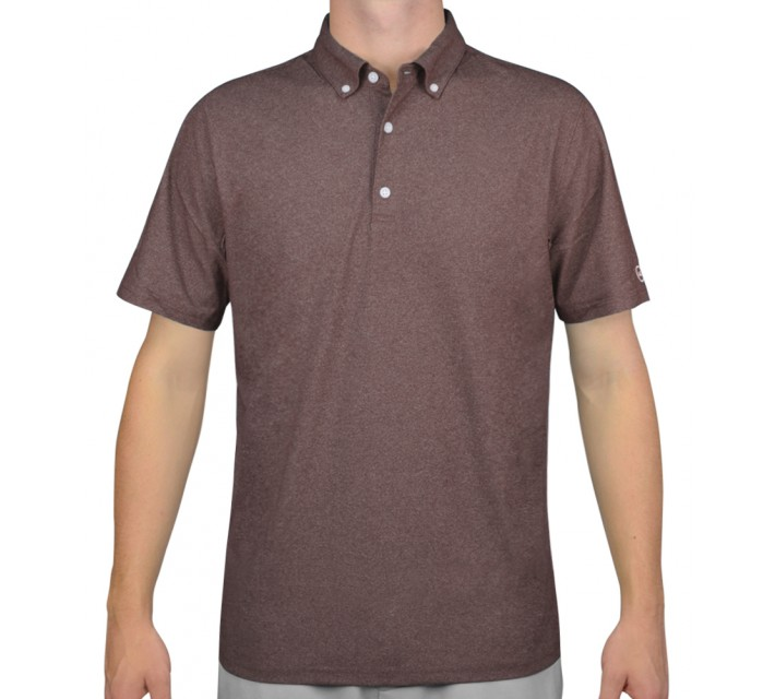 AG GREEN LABEL THE GOWER POLO DEEP PURPLE - AW15
